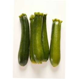 Courgette it.