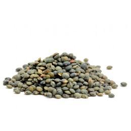 Lentille verte bio/15kg g.m.