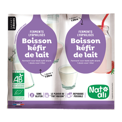 Ferment kefir lait