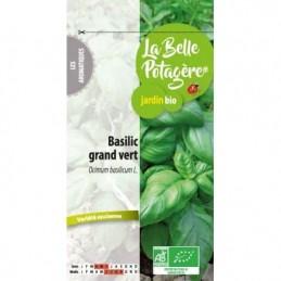 Basilic grand vert 0.5g
