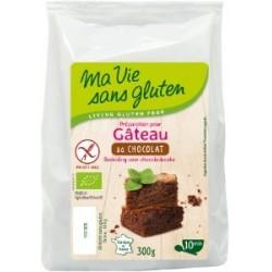 Gateau chocolat/ss gluten