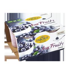 Yaourts aux fruits myrtille